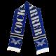 Logo (white on blue) scarf